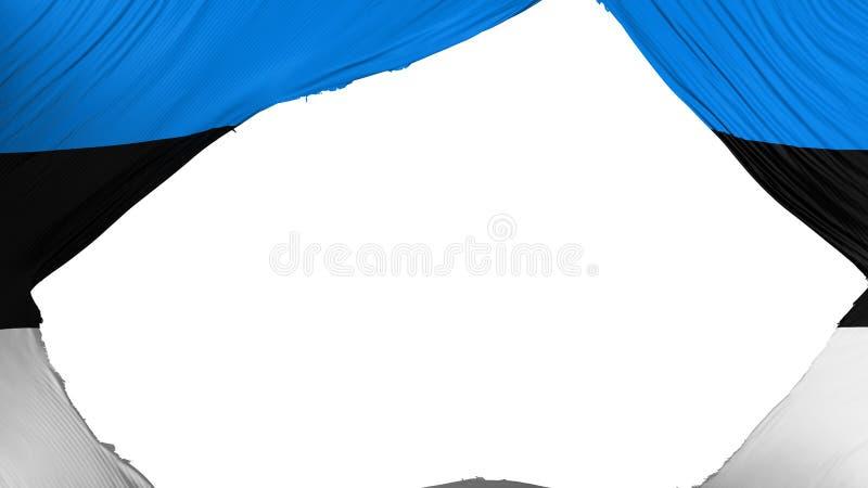Bandera dividida de Estonia stock de ilustración