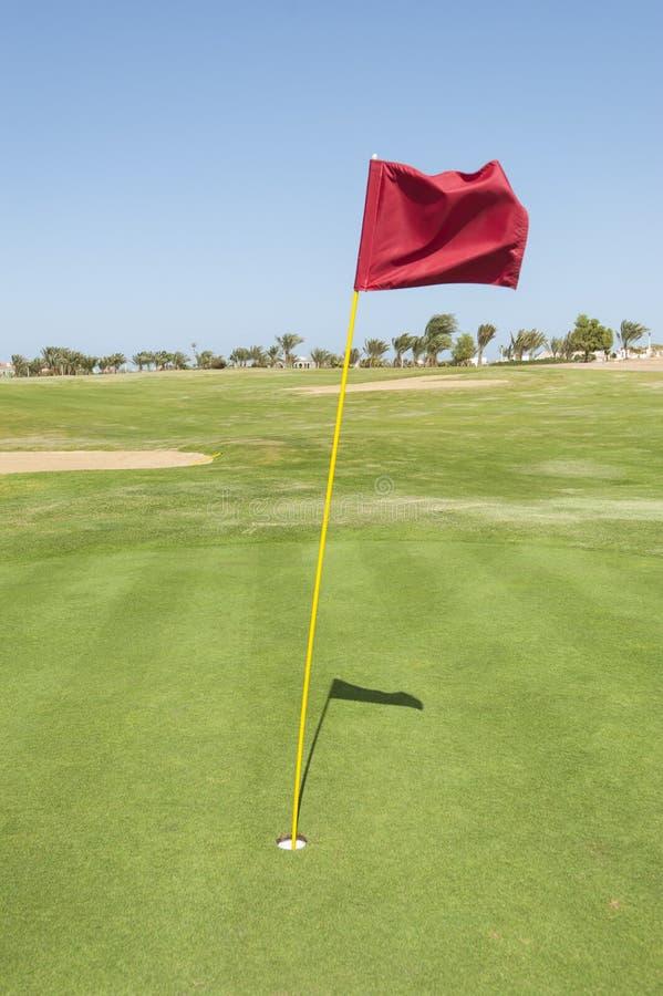 Bandera en un verde del campo de golf fotos de archivo libres de regalías