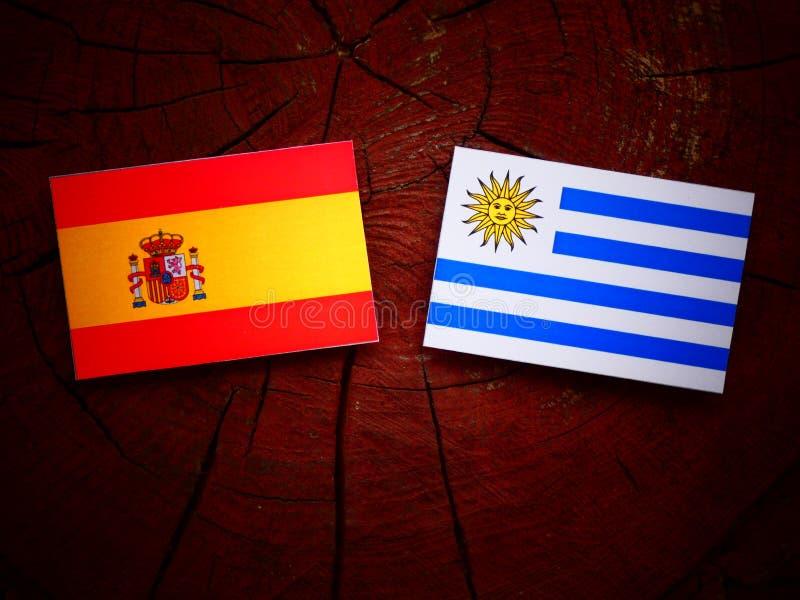 Bandera española con la bandera de Uruguaian en un tocón de árbol aislado foto de archivo libre de regalías