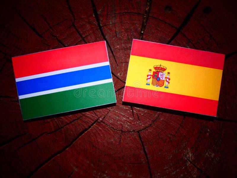 Bandera gambiana con la bandera española en un tocón de árbol imagen de archivo