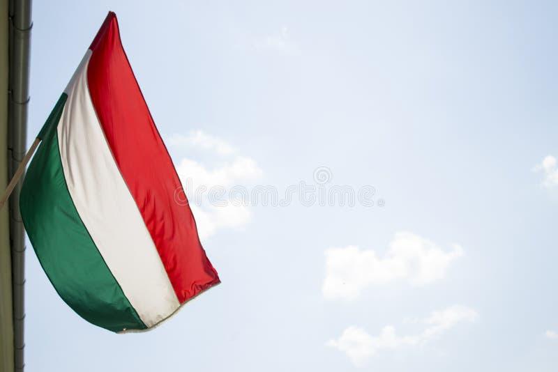 Bandera húngara imagen de archivo libre de regalías