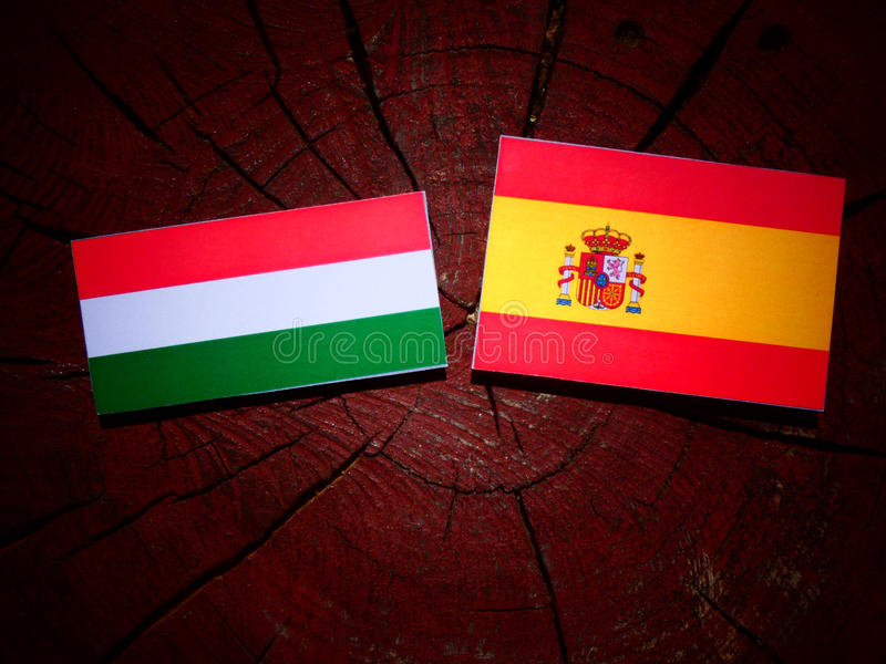 Bandera húngara con la bandera española en un tocón de árbol foto de archivo