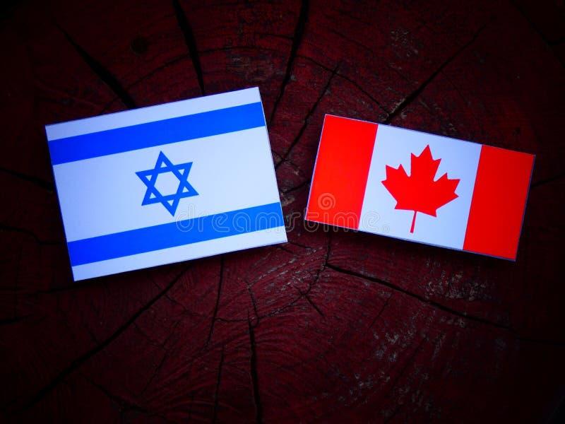Bandera israelí con la bandera canadiense en un tocón de árbol aislado imagen de archivo libre de regalías