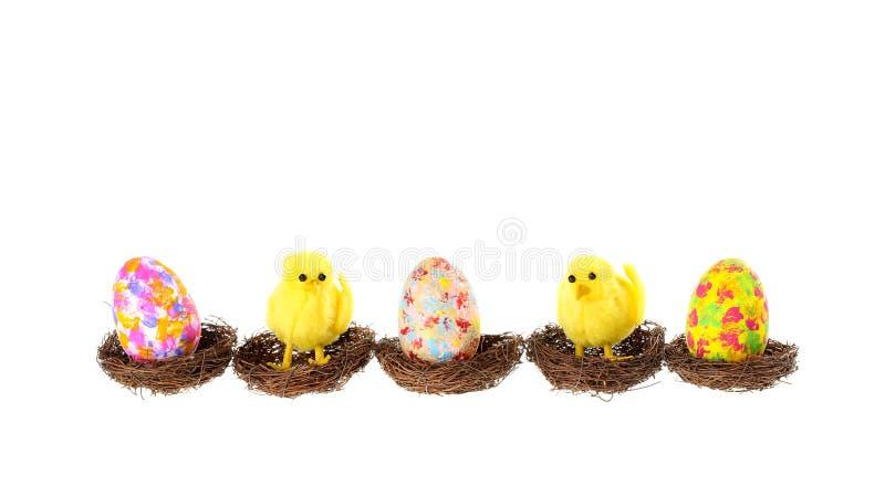 Bandera linda de Pascua con tres huevos pintados coloridos y dos pollos decorativos que se sientan en las jerarquías de los pájar imágenes de archivo libres de regalías