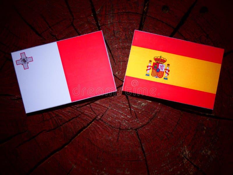 Bandera maltesa con la bandera española en un tocón de árbol imágenes de archivo libres de regalías