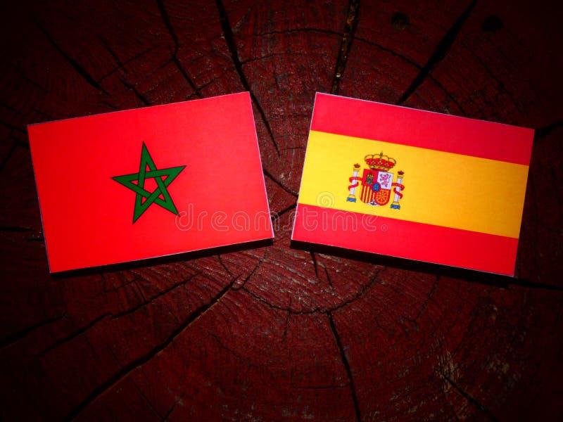 Bandera marroquí con la bandera española en un tocón de árbol fotografía de archivo libre de regalías