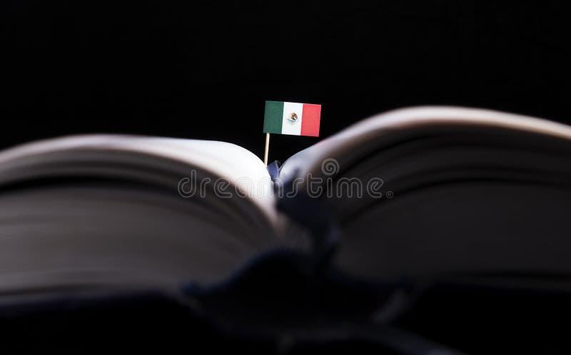 Bandera mexicana en el medio del libro Conocimiento y educación fotografía de archivo libre de regalías