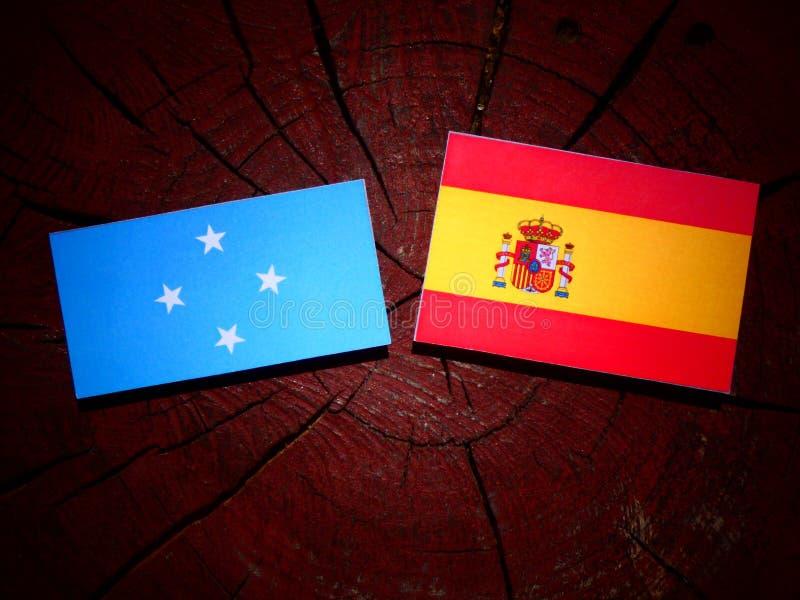 Bandera micronesia con la bandera española en un tocón de árbol imágenes de archivo libres de regalías