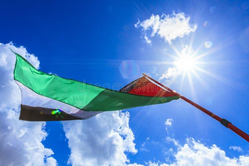 Bandera palestina fotografía de archivo