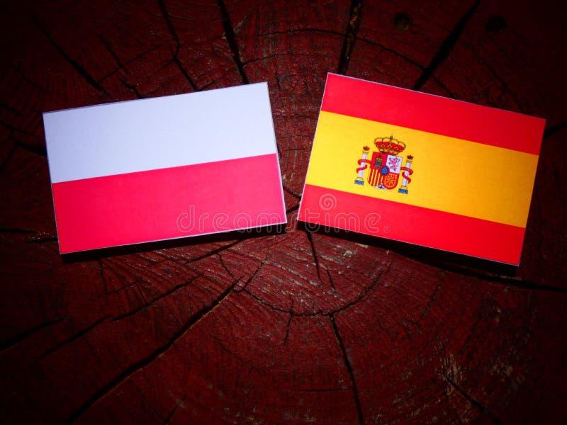 Bandera polaca con la bandera española en un tocón de árbol fotos de archivo libres de regalías