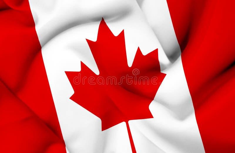 Bandera que agita de Canad? libre illustration