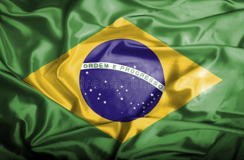 Bandera que agita del Brasil ilustración del vector