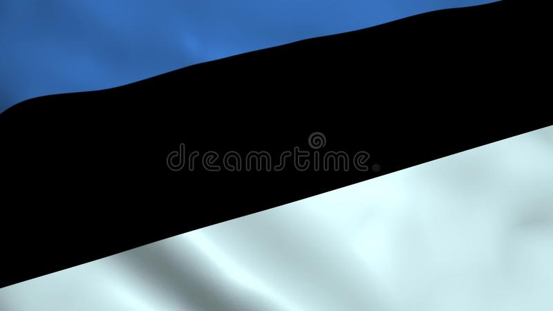 Bandera realista de Estonia libre illustration