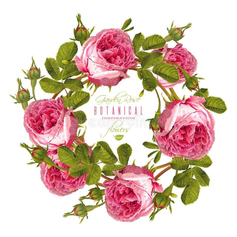 Bandera redonda de Rose imágenes de archivo libres de regalías