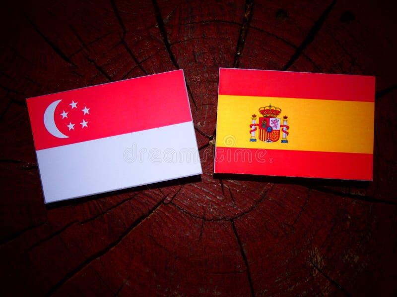 Bandera singapurense con la bandera española en un tocón de árbol foto de archivo libre de regalías