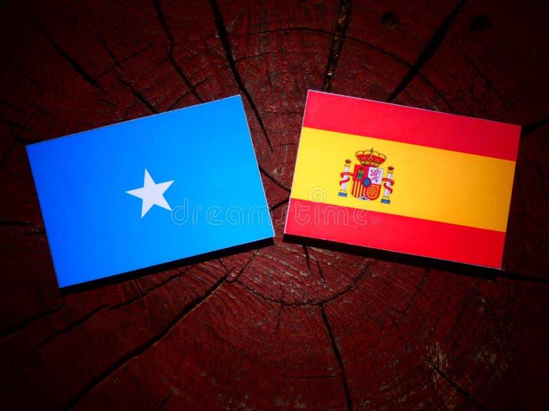 Bandera somalí con la bandera española en un tocón de árbol imágenes de archivo libres de regalías