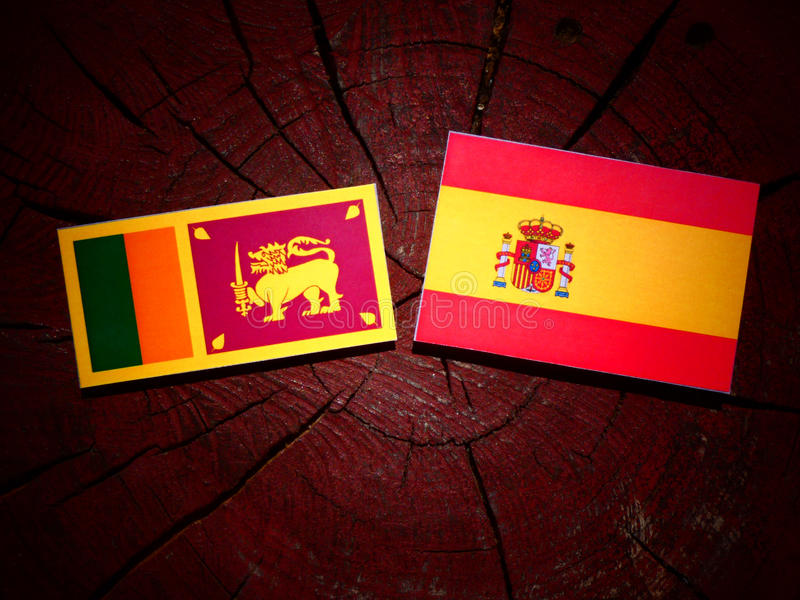 Bandera srilanquesa con la bandera española en un tocón de árbol fotografía de archivo libre de regalías