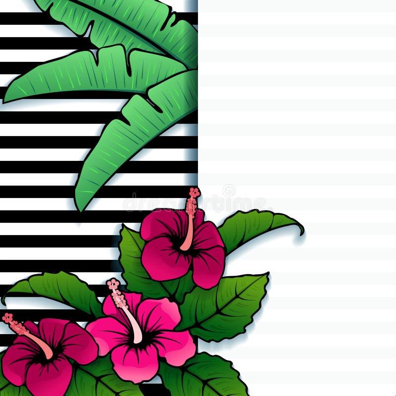 Bandera tropical vibrante con el hibisco ilustración del vector