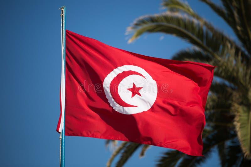 Bandera tunecina foto de archivo libre de regalías