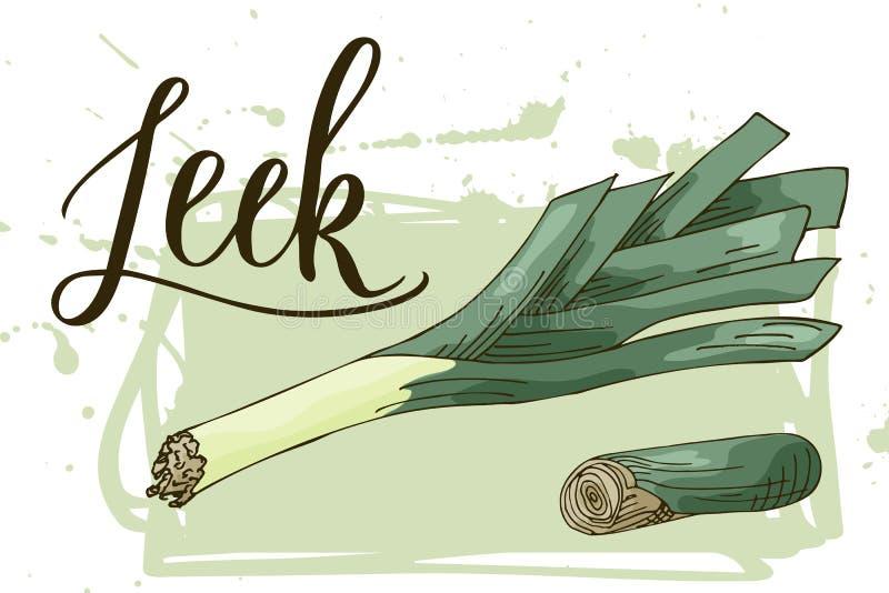 Bandera vegetal de la comida Bosquejo del puerro Cartel del alimento biológico Ilustración del vector stock de ilustración
