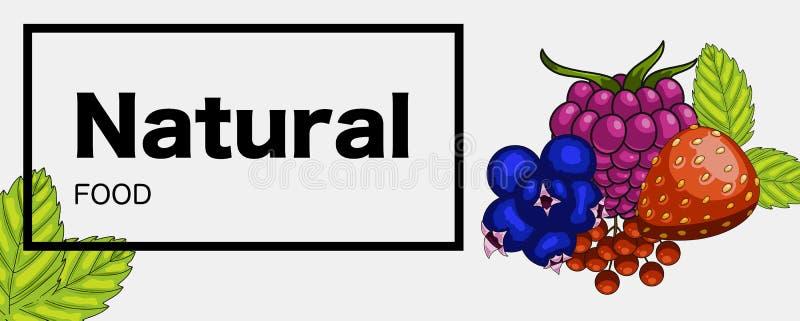Bandera verde natural de la red alimentaria ilustración del vector