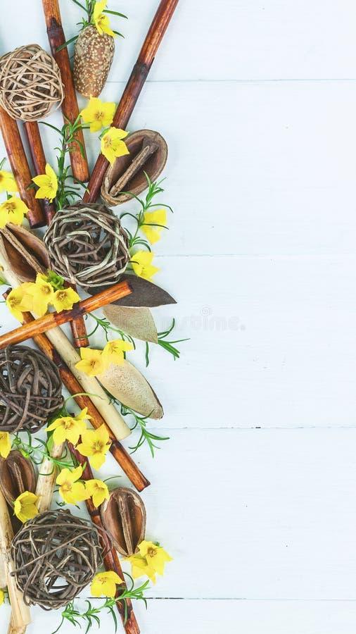 Bandera vertical del BALNEARIO Bambú seco, brotes frescos, flores tropicales en un fondo de madera ligero Visi?n superior fotos de archivo libres de regalías