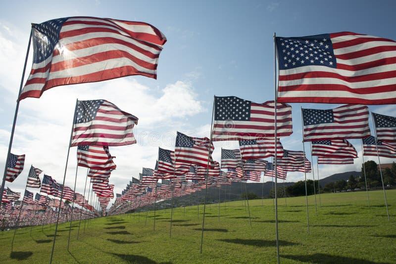 Banderas americanas, foto de archivo