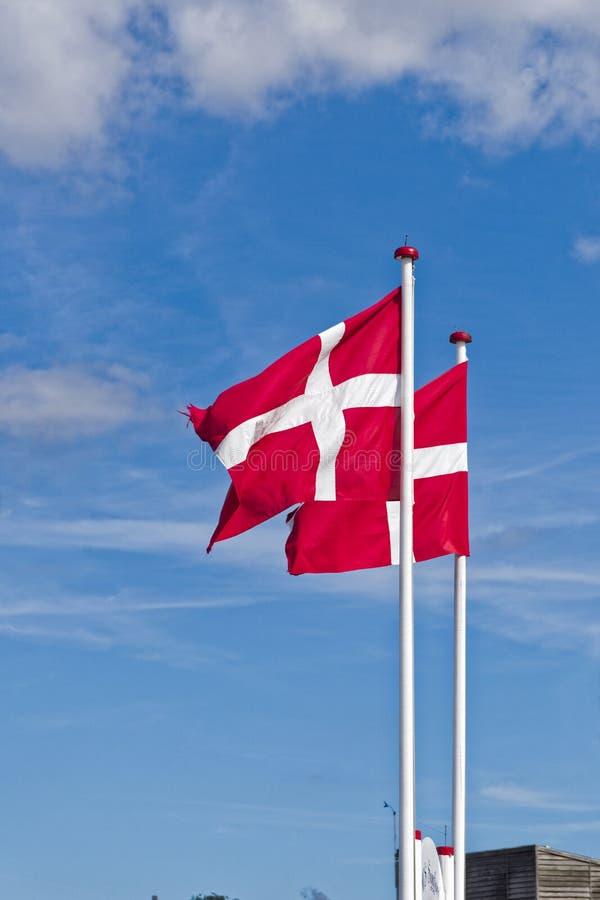 Banderas danesas expuestas al viento imagenes de archivo
