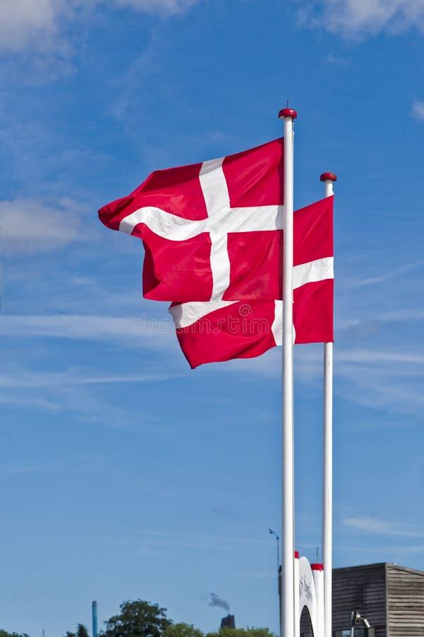 Banderas danesas expuestas al viento fotos de archivo libres de regalías
