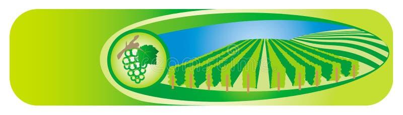 Banderas de la viticultura ilustración del vector