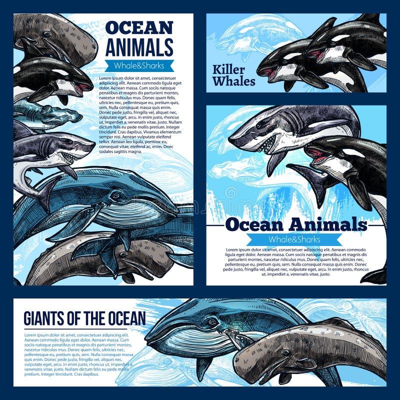Banderas del animal del océano de la ballena y del tiburón stock de ilustración