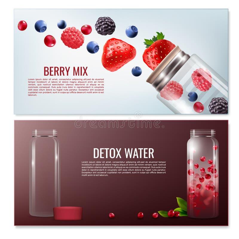 Banderas horizontales de las bebidas del Detox stock de ilustración