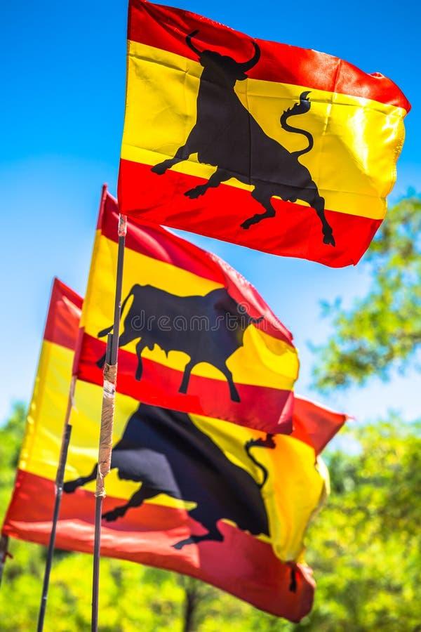 Banderas oficiales nacionales españolas Símbolo patriótico fotografía de archivo libre de regalías