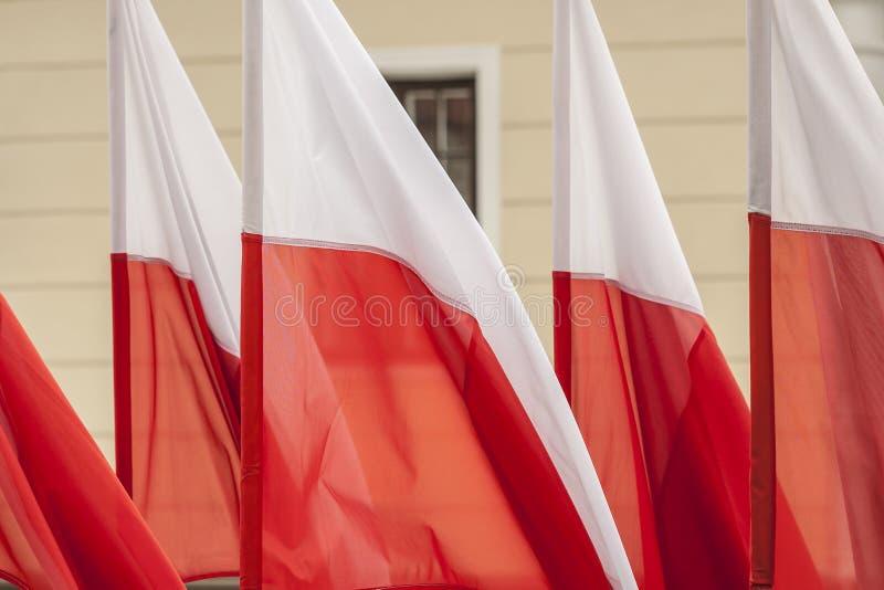 Banderas polacas fotografía de archivo