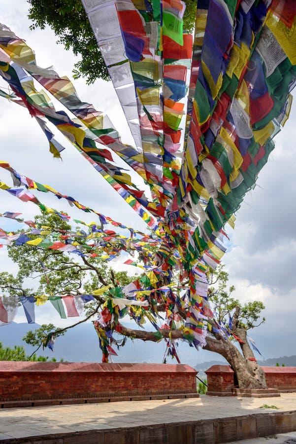 Banderas tibetanas coloridas del rezo en Swayambhunath en Katmandu, Nep imagen de archivo libre de regalías