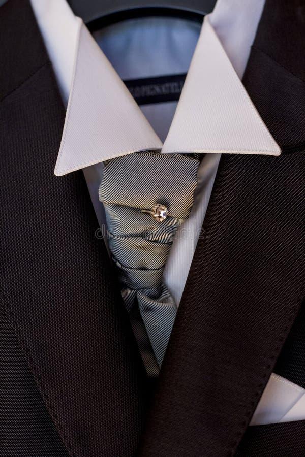 Bandfnuren med den skinande broschen royaltyfri fotografi