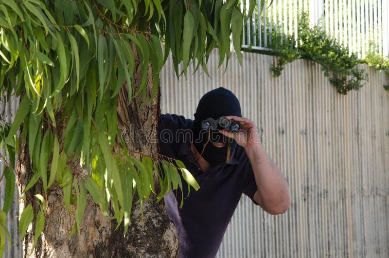 Bandido que mira fijamente usted a través de los prismáticos imagen de archivo libre de regalías