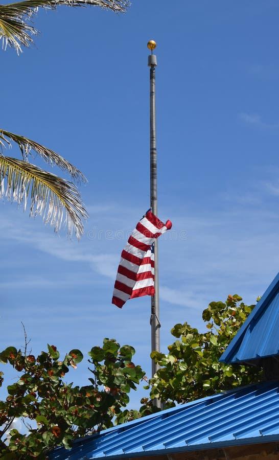 Bandiera americana all'albero mezzo fotografia stock libera da diritti