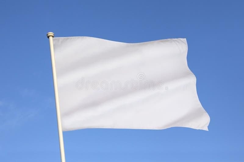 Bandiera bianca della resa - metafora di affari fotografia stock libera da diritti