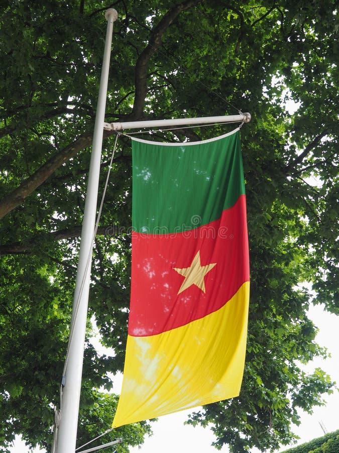Bandiera camerunese del Camerun fotografie stock libere da diritti