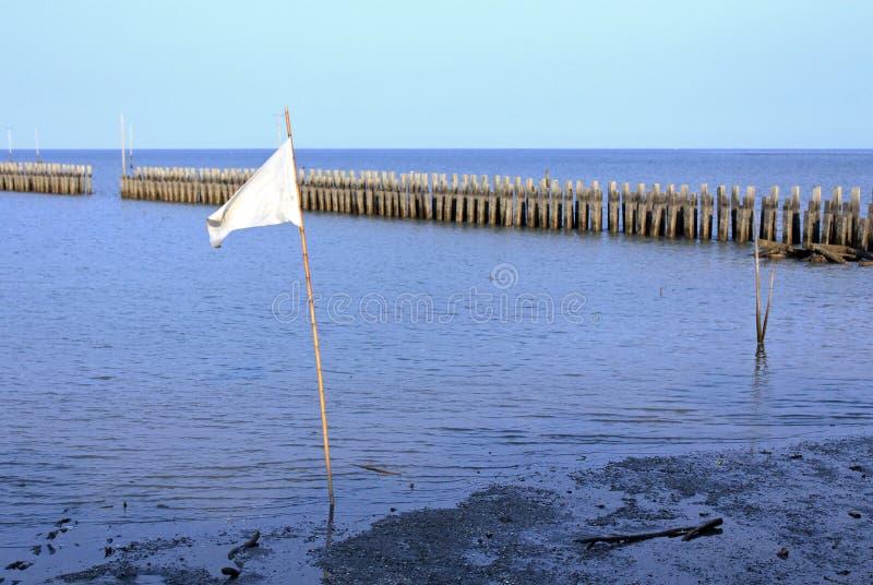 Bandiera d'ondeggiamento bianca fotografia stock libera da diritti