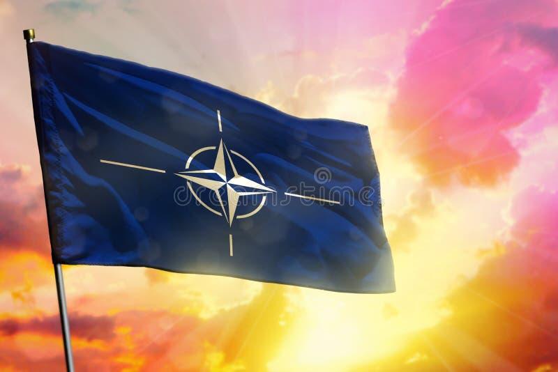 Bandiera d'ondeggiamento di NATO sul bello fondo variopinto di alba o di tramonto Sfera differente 3d fotografia stock libera da diritti