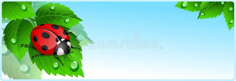 Bandiera del Ladybug illustrazione vettoriale