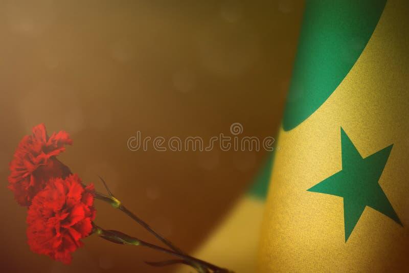 Bandiera del Senegal con due fiori rossi del garofano per l'onore dei veterani o del Giorno dei Caduti sul fondo scuro arancio de immagine stock libera da diritti