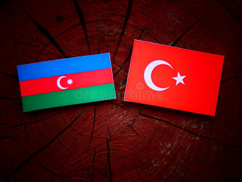 Bandiera dell'Azerbaigian con la bandiera del turco su un ceppo di albero immagine stock libera da diritti