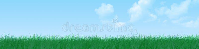 Bandiera dell'erba immagine stock libera da diritti