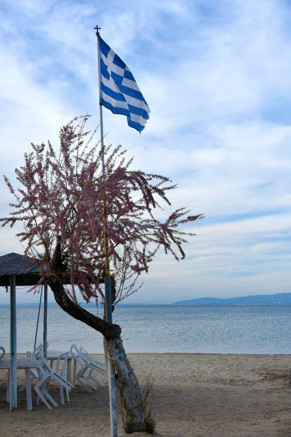 Bandiera della Grecia sulla spiaggia immagini stock