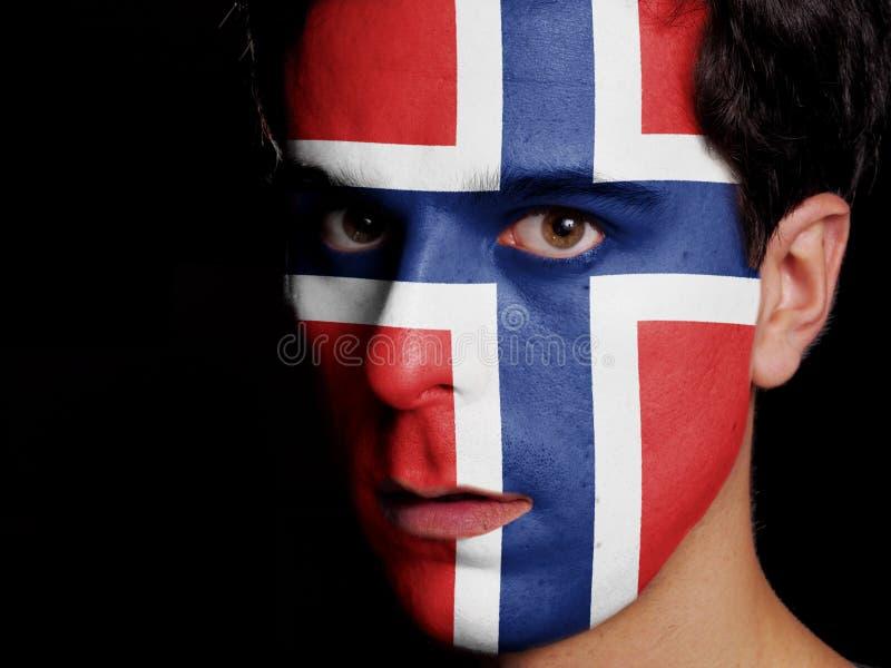 Bandiera della Norvegia fotografia stock libera da diritti
