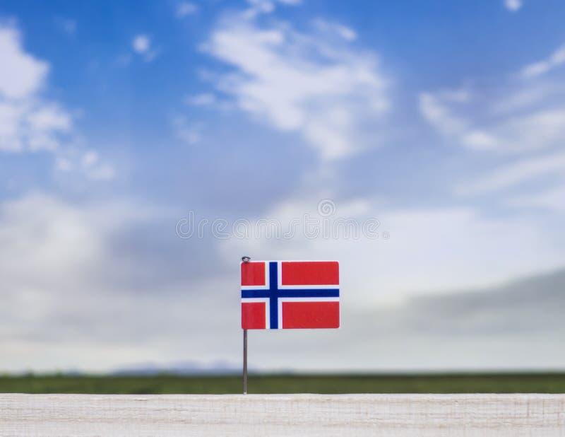 Bandiera della Norvegia con il vasti prato e cielo blu dietro  fotografia stock