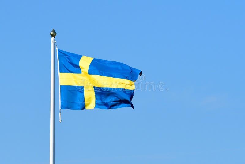 Bandiera della Svezia nel vento fotografia stock libera da diritti
